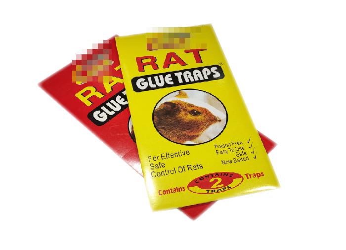 Mouse Glue Trap