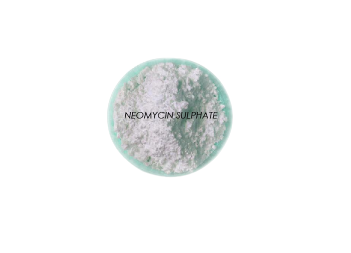 Neomycin-Sulphate